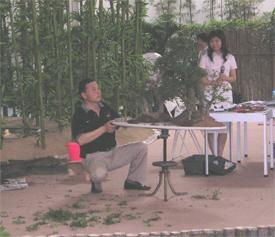 Expo Penjing demonstration