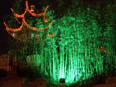 How peaceful, the bamboo looks in Yangzhou, by night lighting.