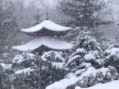 A snow clad pavilion in the Schnormeier Chinese Cup Garden.