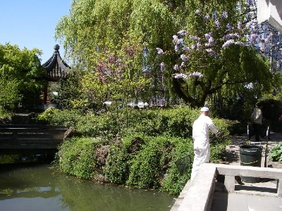 Behind the scene - maintenance by Mr. James Yu at Dr. Sun Yat-Sen Classical Chinese Garden, Vancouver, BC.