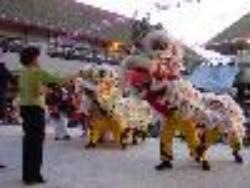 Lion Dance performance in Chinese courtyard