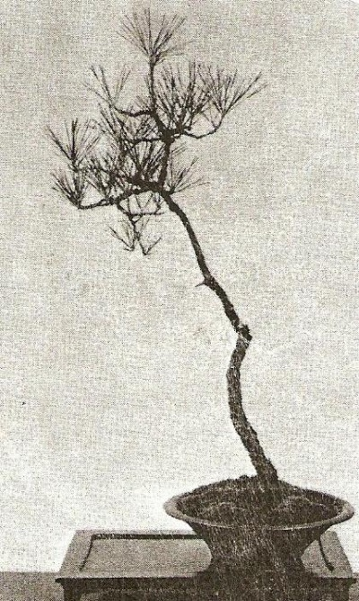 Literati style penjing by unknown artist