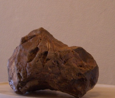 A darker piece of rock, which has almost metal-like qualities about it - or perhaps in reality, it has ?