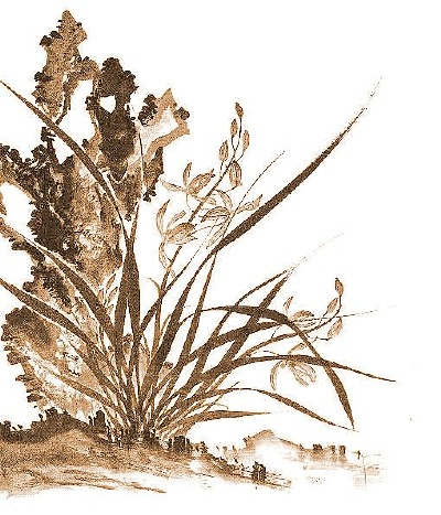 Chinese orchid painting, with Taihu rock.